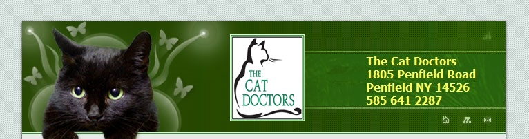 The Cat Doctors in Penfield NY